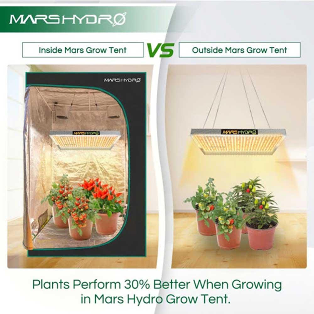 grow tent inside