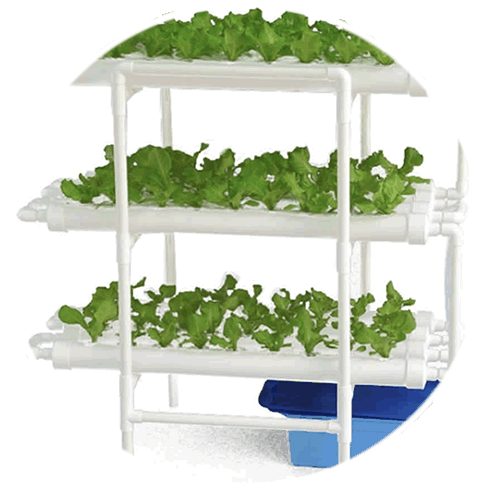 where to buy nft hydroponics kit online